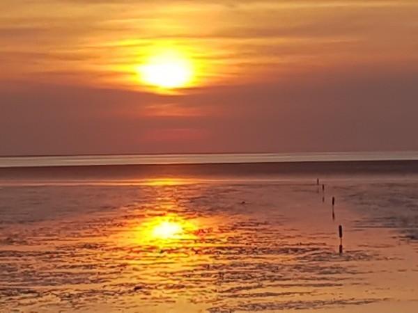Nordseeschlick in der 1 Liter Flasche naturbelassen Wellness für die Seele Schlick Wattenmeer Nordseeerlebnis Nordsee Freiheit Erlebnis Urlaub Urlaubserlebnis Meer Meeresschlick